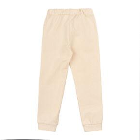 Спортивные штаны утеплённые Bonka